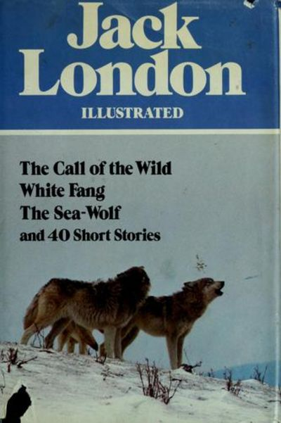 white fang essay questions White fang, written by jack london, is a wonderful adventure novel that vividly depicts the life of a wolf by the name of white fang throughout the course of the novel, white fang goes through numerous learning experiences as he interacts with humans and other wolves from alaska around the turn of the century.