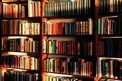 SK Books (IOBA) store photo