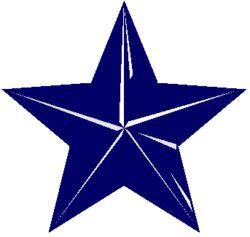 logo: Blue Star Books