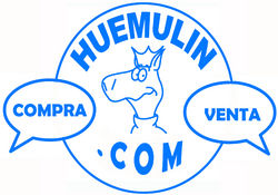 huemulin comics store photo