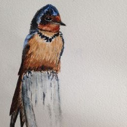 photo of Barn Swallow Books