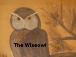 The Wise Owl bookstore logo