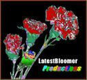 LatestBloomer Ltd. logo