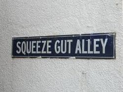 Squeeze Gut Alley Rare Books store photo