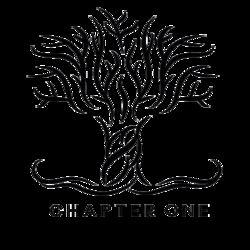 logo: chapteronestores