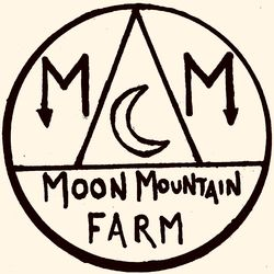 logo: Moon Mountain Trader