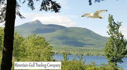 Mountain Gull Trading Company logo