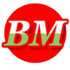 logo: bookmahal