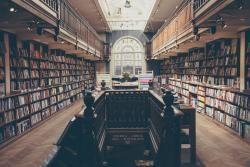 Shelf Indulgence Books store photo