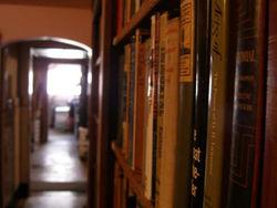 Alba's Books store photo