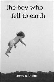 The Boy Who Fell To Earth: A Modern Pilgrim's Progress