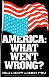 image of America: What Went Wrong