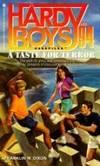 A TASTE FOR TERROR (HARDY BOYS CASE FILE 94): A TASTE FOR TERROR (Hardy Boys Casefiles)