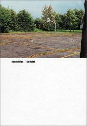 Jan de Vries: Co-Relief: The Book of Worldly Wonders