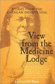 VIEW FROM THE MEDICINE LODGE: Stories From The American Indians Soul