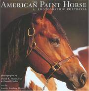THE AMERICAN PAINT HORSE:  A Photographic Portrayal.