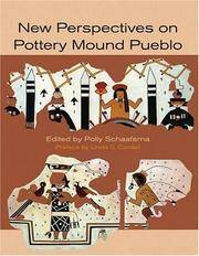 New Perspectives on the Pottery Mound Pueblo