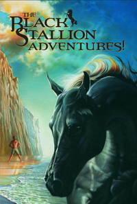 Black Stallion Adventures