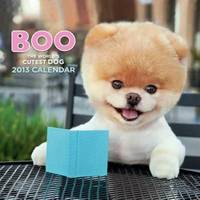 Boo. The Life Of The Cutest Dog by J H Lee - Hardcover - from Book Outlet (SKU: 39B9LN006SLC_ns)