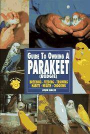 Guide to Owning a Parakeet : Budgie
