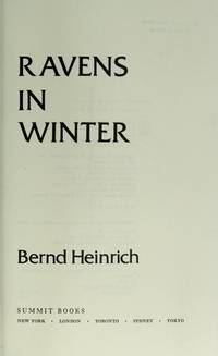 image of Ravens in Winter.