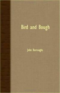 Bird and Bough -