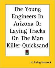 Young Engineers In Arizona or Laying Tracks On the Man Killer Quicksand