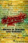Wannabe. Gangs in Suburbs and Schools