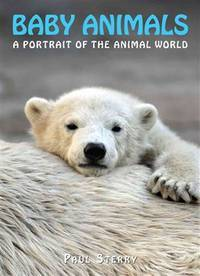 Baby Animals (A Portrait of the Animal World)