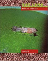 MANFRED WILLMANN: DAS LAND 1981-1993