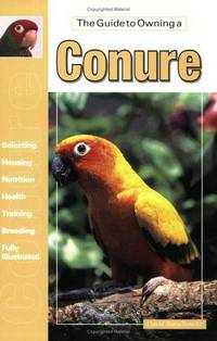 The guide to owning a conure