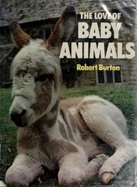 The Love Of Baby Animals