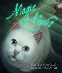 Magic Night (Picture Book)