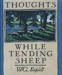 Thoughts While Tending Sheep
