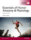 image of Essentials of Human Anatomy & Physiology ( 11th Edition )