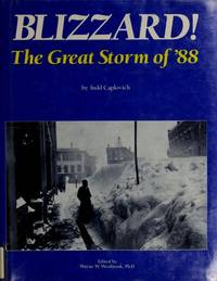 image of Blizzard: The Great Storm of 88