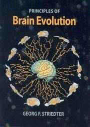 Principles of Brain Evolution by Georg F. Striedter - Hardcover - 2004-10-05 - from Ergodebooks (SKU: SONG0878938206)