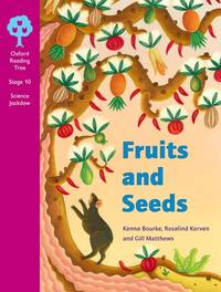 image of Oxford Reading Tree: Stages 10-11: Cross-Curricular Jackdaws: Class Pack (36 books, 6 of each title)