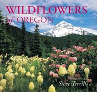 Oregon Wildflowers: Littlebooks