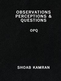 OBSERVATIONS PERCEPTIONS & QUESTIONS: OPQ