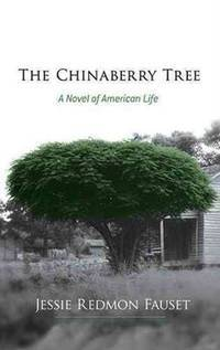 The Chinaberry Tree: A Novel of American Life