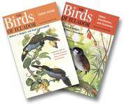 The Birds of Ecuador - Two Volumes: Status, Distribution, and Taxonomy and  Field Guide