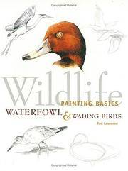 Wildlife Painting Basics Waterfowl & Wading Birds