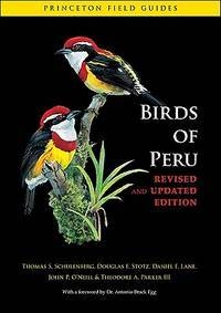 BIRDS OF PERU.