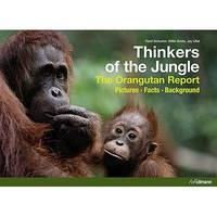Thinkers of the jungle