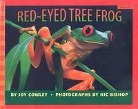 Red Eyed Tree Frog Scholastic Bookshelf Nature
