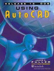 Using AutoCAD Release 13 DOS