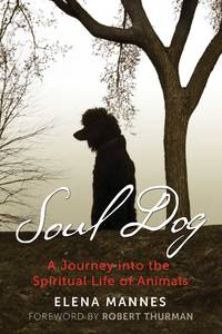SOUL DOG: A Journey Into The Spiritual Life Of Animals