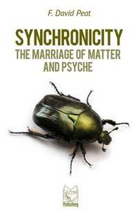 SYNCHRONICITY: The Marriage Of Matter & Psyche (new edition)