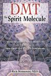 image of DMT: The Spirit Molecule: A Doctor's Revolutionary Research into the Biology of Near-Death and Mystical Experiences